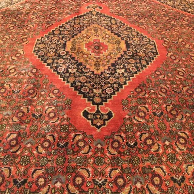 15070 Bidjar rug semi antique 11.0 x 8 ft / 330 x 230 cm vintage