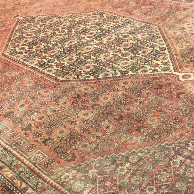 15070 Bidjar rug semi antique 10.9 x 7.5 ft / 330 x 230 cm vintage